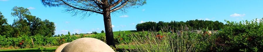 Nos vins : Domaine La Croix des Marchands et Château Palvié