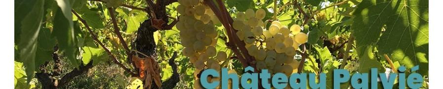Boutique des vins de Gaillac AOC et AOP du Château Palvié
